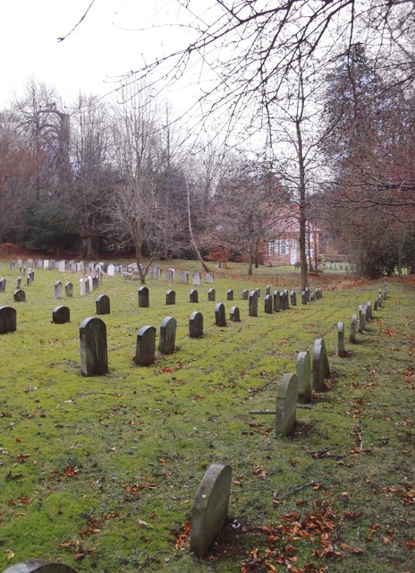 Quakers - at rest, New Year's Day, 2012