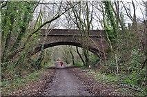 SS9712 : Tiverton : Tidcombe Bridge over Old Railway Line by Lewis Clarke