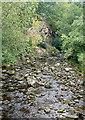 NZ8202 : Eller Beck at Beck Hole by Graham Horn
