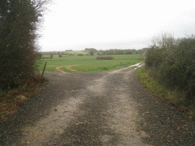 View of Little Wildcroft field by Sandy B