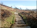 ST2198 : Hillside path above Upper Viaduct Terrace, Crumlin by Jaggery