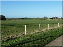 TQ2411 : Footpath across field by Dave Spicer