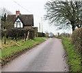 SY5889 : Entering Littlebredy by Jonathan Kington