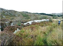 NX5071 : A path beside the Palnure Burn by Ann Cook