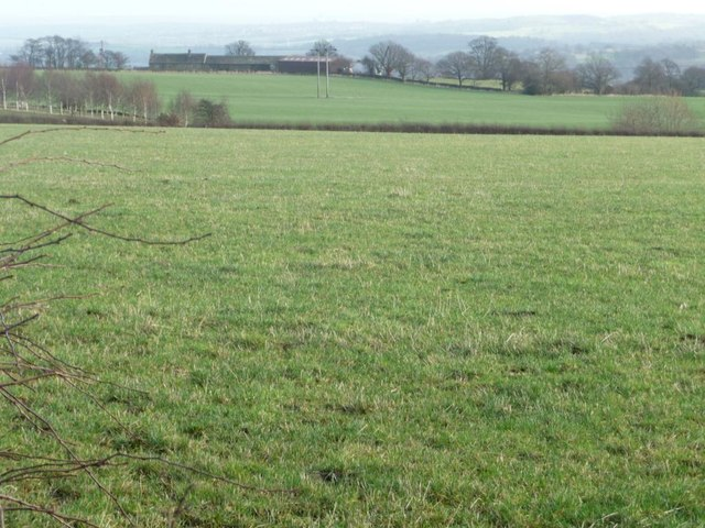 Large field east of Fall Edge Lane
