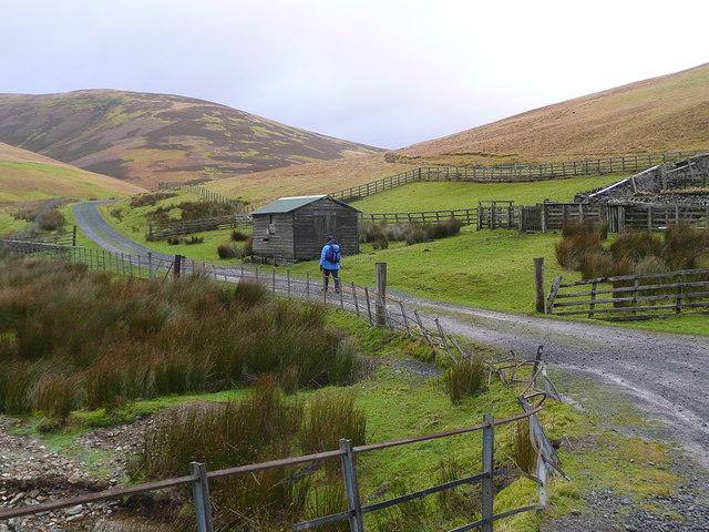 The sheep pens near Grains
