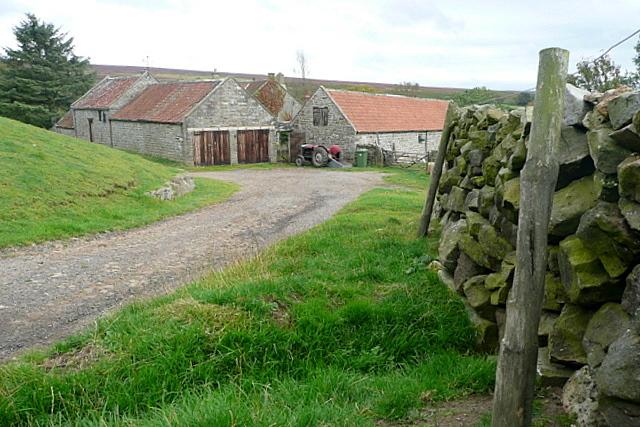 Partridge Hill Farm