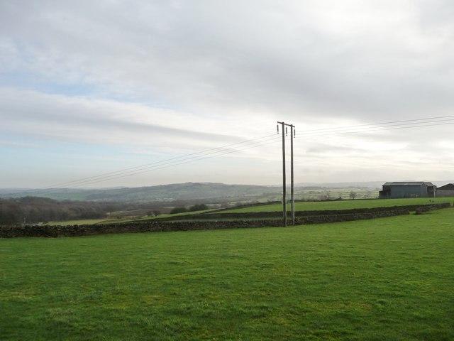 Telegraph pole on farmland