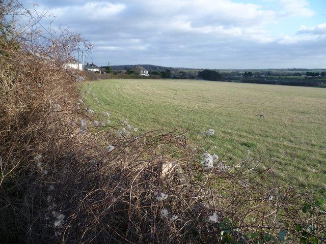 Countryside at Hawley
