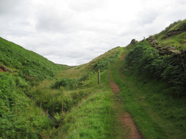 Footpath and Lino Beck
