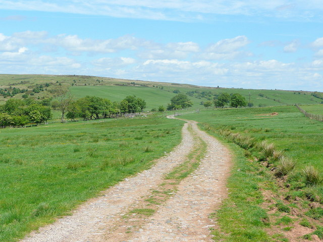 Track on Parc y Meirch
