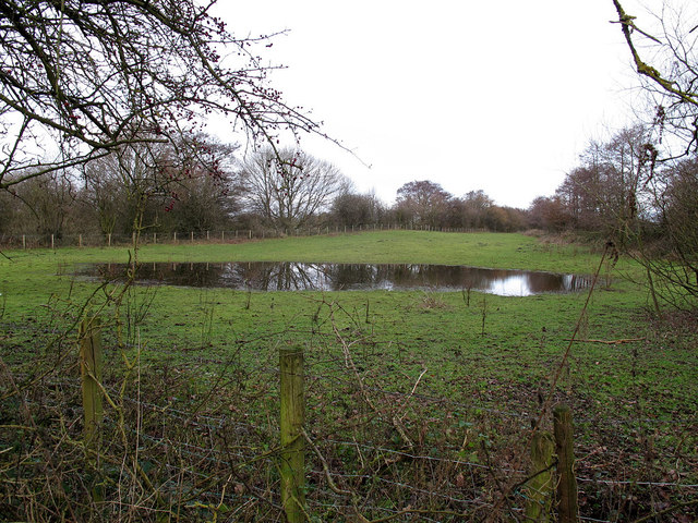 Pond near the canal