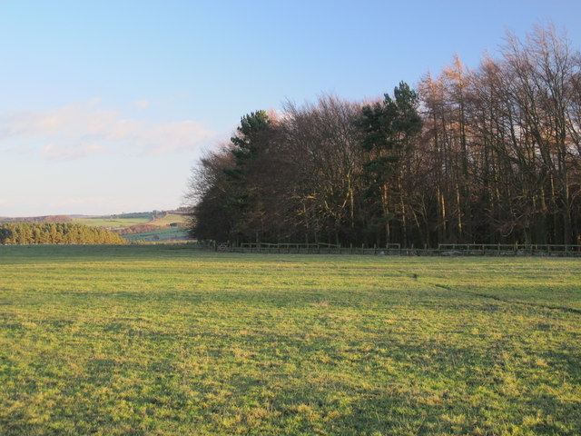 Pastures and woodland east of Fell House