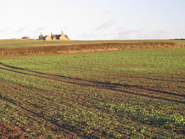 Farmland west of Greymare Hill