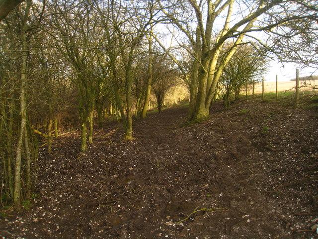 Footpath on Cottington's Hill