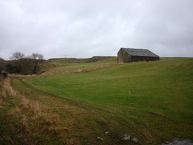 Pasture at New Barn, High Birkwith