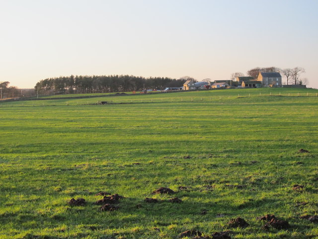 Farmland east of West Minsteracres