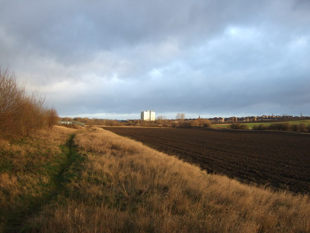 Path and farmland off Pontefract Lane