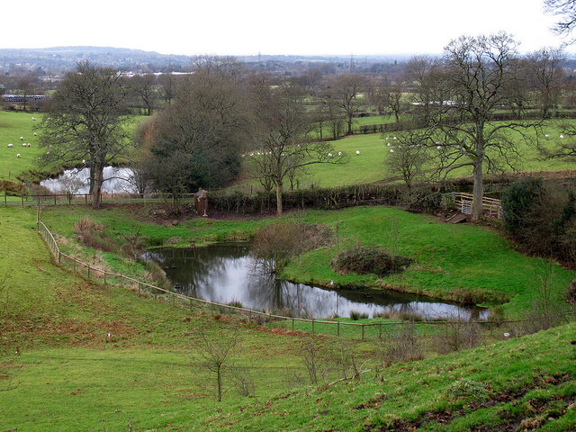 Two ponds at Swanscoe