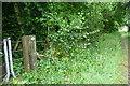 SU5231 : Footpath towards Avington by Graham Horn