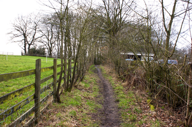 Footpath to The Shawes