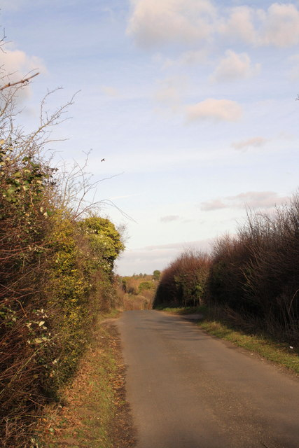 Old Icknield Way, looking north