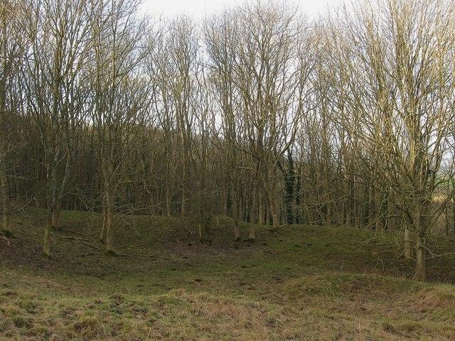 Firle Plantation