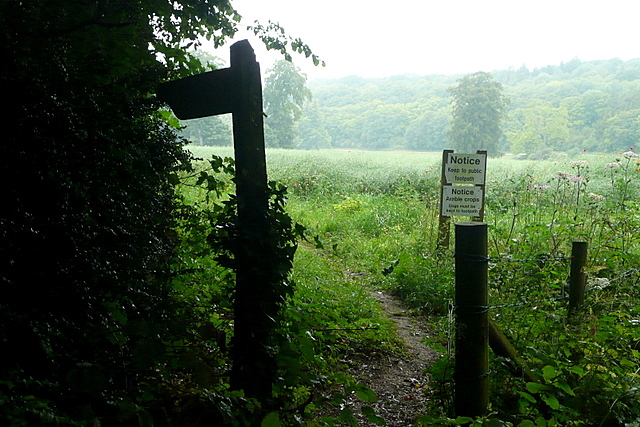 Footpath to Larkwhistle Farm