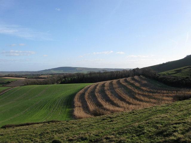 Link Field (1)