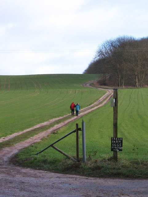 Corner on the Wolds Way