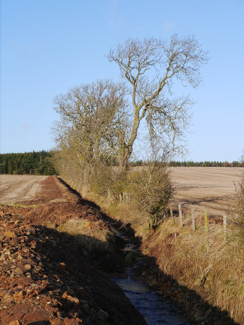Drainage In Arable Land