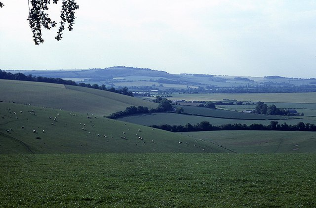 View from Stocks Lane (3)