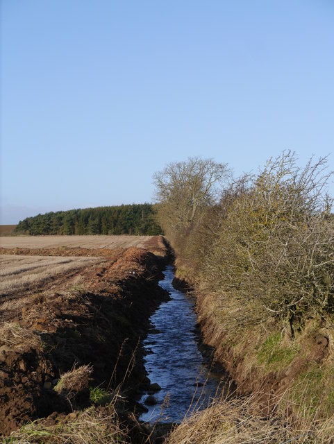 Field Boundary And Drainage