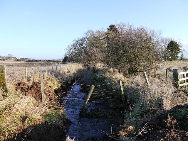 Field Boundaries Near Former Mill Pond