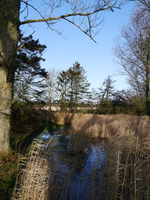 Former Mill Pond Near Eccles Tofts