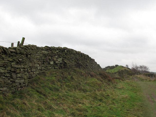 Stone wall on Kerridge Hill