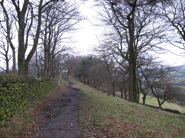 Ridge path on Kerridge Hill
