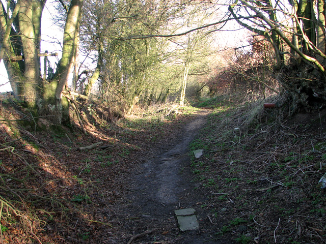 Footpath from Holly Wood to Capel Road, Bentley