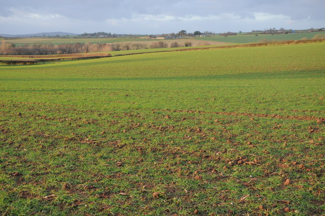 Arable land near Kingstone