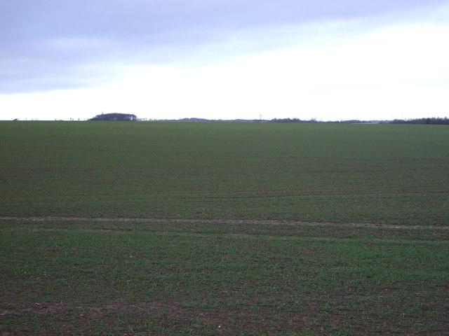 Farmland north off Selby Road