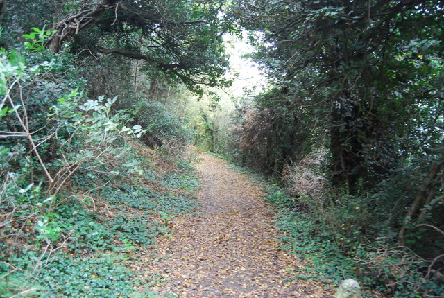 Footpath to Cliffe Pools Nature Reserve