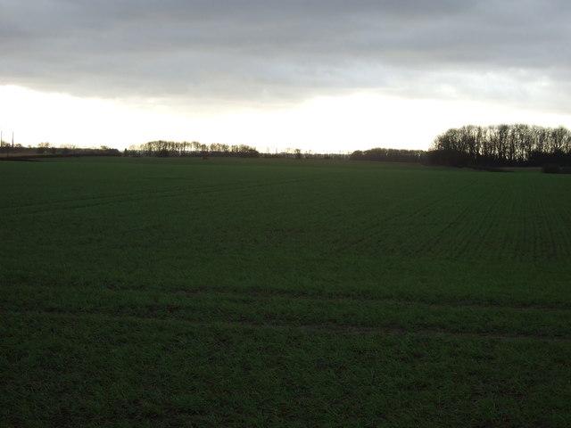Farmland off the A63