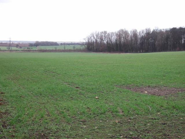 Farmland near Pointer Farm