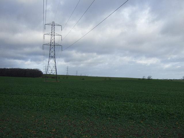 Farmland off Westfield Lane