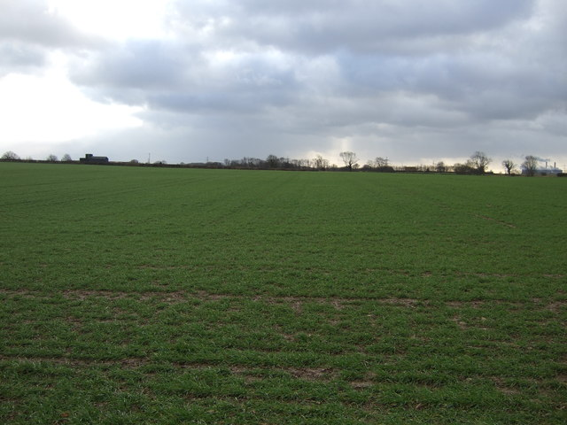 Farmland off Westfield Lane