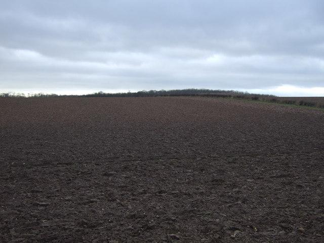 Farmland off Copley Lane