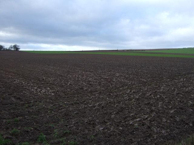 Farmland, Dinting Dale
