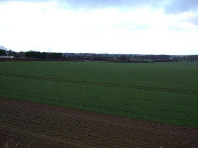 Farmland near Towton