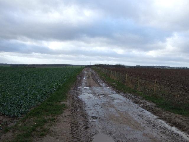 Farm track off the B1217