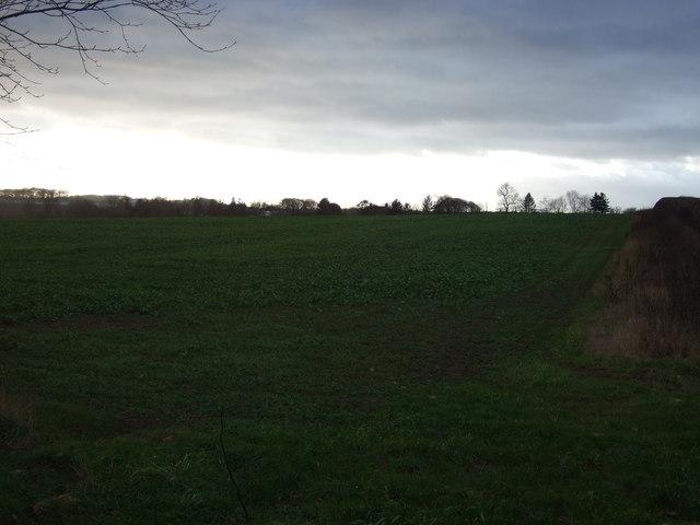 Farmland off the Great North Road